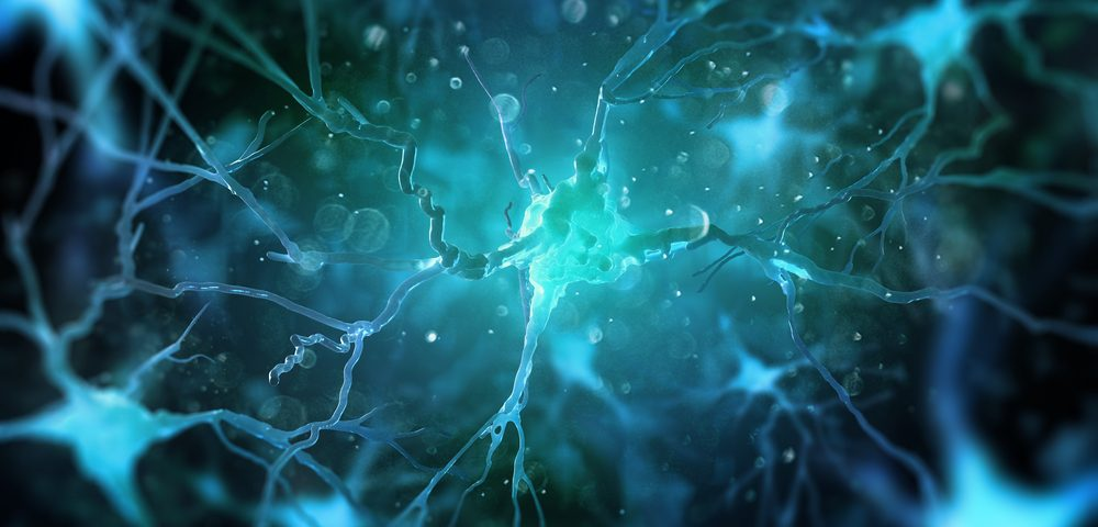 Fragile X Protein May Be Crucial for Cells That Support Neurons, Study Finds