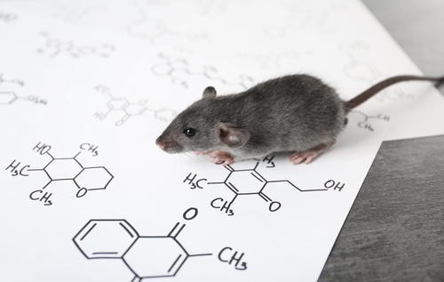 Inhibiting HDAC6 Enzyme Has Potential for Treating FRX, Mouse Study Finds