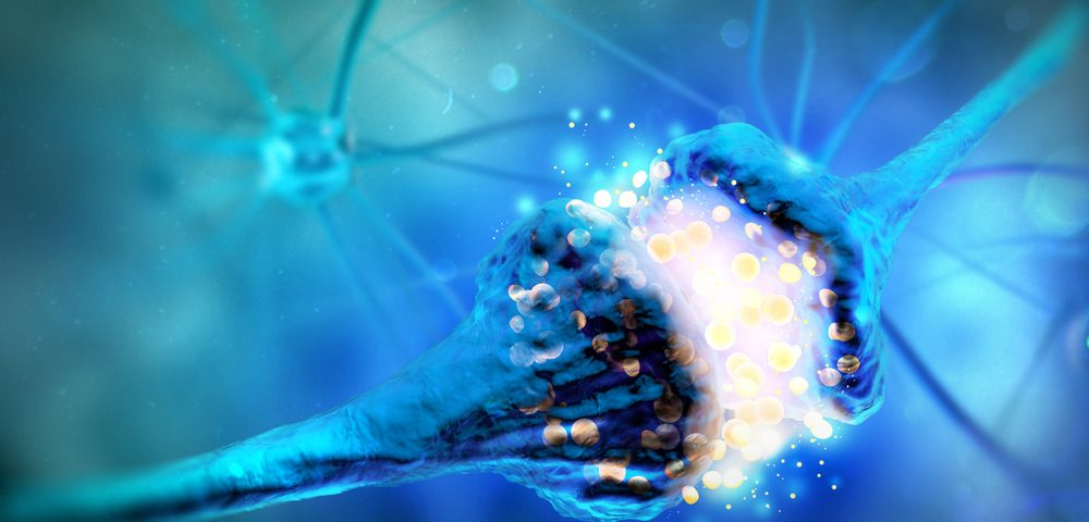 Newly Discovered Mechanisms Controlling Memory, Learning Could Lead to Therapies
